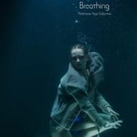 Meditative Yoga Collective Breathing