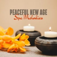 World Music For The New Age Peaceful New Age Spa Melodies