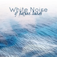 White Noise Research White Noise of Nature Sounds