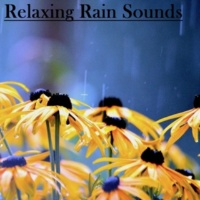 Rain Sounds, Spa & Spa, Nature Sounds Nature Music Soothing Rain(Loopable,No fade)
