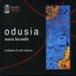 Orchestra d'Archi Italiana & Mario Brunello feat. Mansour El Mida
