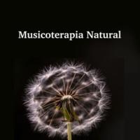 Musica Para Dormir & Zen Music Garden Musicoterapia Natural: Sonidos Sanadores de la Naturaleza (Lluvia, Olas del Mar, Canto de los Pájaros, Viento)