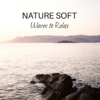 Sounds of Nature Relaxation Nature Soft Waves to Relax