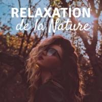 Jardin japonais Relaxation de la Nature - sons apaisantes et calme, musicothérapie, Musique méditation yoga prénatal