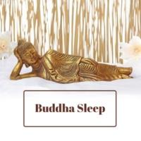 Buddha Lounge Buddha Sleep