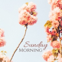 Morning Meditation Music Academy Sunday Morning - Soft, Peaceful Music for Mindfulness Exercises to End the Weekend