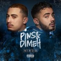 Pins & Dimeh Nindo