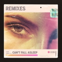 Zookeepers Can't Fall Asleep (Remixes)