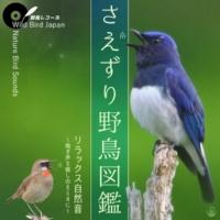 Wild Bird Japan さえずり野鳥図鑑 リラックス自然音 ~鳴き声を癒しのBGMに~(野鳥レコーズ)
