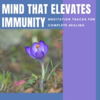 Divinity and Devotion Records & Relaxing Mandala Co & Alluring Melody Productions Mind That Elevates Immunity - Meditation Tracks For Complete Healing