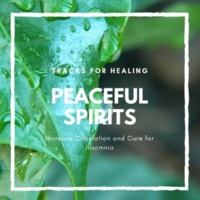 Calm Easy Mindful and Mellow Healing Music & Easy Malodic Mind Body Soul Balancing Ambient Harmonies Peaceful Spirits - Tracks For Healing, Increase Circulation And Cure For Insomnia