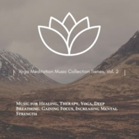 Curing Music for Mindfulness and Bliss & Healing Music for Inner Harmony and Peacefulness & Subliminal Healing Vibes Production & Divine Buddha & Co & Supernal Quietism Project Yoga Meditation Music Collection Series, Vol. 2 (Music For Healing, Therapy, Yoga, Deep Breathing, Gaining Focus, Increasing Mental Strength)