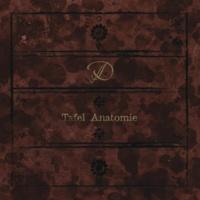 D Tafel Anatomie