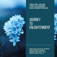Curing Music for Mindfulness and Bliss & Healing Music for Inner Harmony and Peacefulness & Pure White Aura Record & Subliminal Healing Vibes Production Journey To Enlightenment (Healing Music For Calmness And Inner Peace) (Deep Relaxation, Stress Reduction, Anxiety Relief And New Age Meditation, Vol. 5)