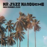 Mr Jazz Manouche New Summer Jazz
