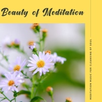 Curing Music for Mindfulness and Bliss & Healing Music for Inner Harmony and Peacefulness & Pure White Aura Record & Subliminal Healing Vibes Production & Divine Buddha & Co & Supernal Quietism Projec Beauty Of Meditation - Meditation Music For Cleansing Of Soul