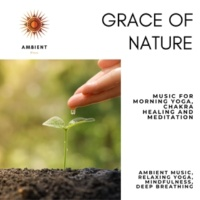 Pure White Aura Record & Subliminal Healing Vibes Production & Yoga Asana Productions & Art of Meditation & Soothing Rituals & Co Grace Of Nature (Music For Morning Yoga, Chakra Healing And Meditation) (Ambient Music, Relaxing Yoga, Mindfulness, Deep Breathing)
