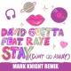 David Guetta Stay (Don't Go Away) [feat. Raye] (Mark Knight Remix)
