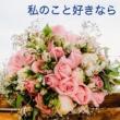 初音ミク & Kenji1205 同窓会