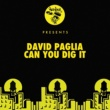 David Paglia Can You Dig It