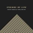 DAISHI DANCE/DJ TORA/LUKE DB Strings Of Life (Radio Edit)