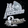 Alacranes Musical Por Tu Amor [Duranguense]