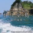 Nature Sounds & Sound Callabo 岩の海岸 ~穏やかで力強い波