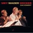 Hannes Wader/Reinhard Mey Kleine Stadt [Live]