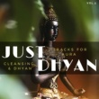 Curing Music for Mindfulness and Bliss & Healing Music for Inner Harmony and Peacefulness & Harmonious and Peaceful Mantra & Divinity and Healing Records & Mindful Beats Records & Serene and Clam Beat Just Dhyan - Tracks For Aura Cleansing & Dhyan, Vol.2