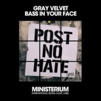 Vip & Gray Velvet Bass In Your Face