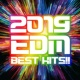 Platinum project 2019 EDM BEST HITS!!