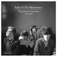 Echo & The Bunnymen My Kingdom (John Peel Session)