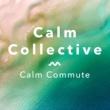 Calm Collective Calm Commute