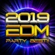 Platinum project 2019 EDM PARTY BEST!!