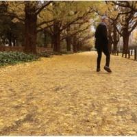 佐野元春 或る秋の日