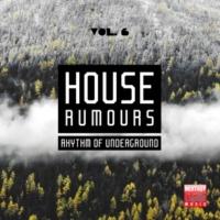 Great Exuma & Key De Es & Tommy Evans & Radio Groove Foundation & Zebra & House Freak & L-Noire & Sound Extension & Faz! & Aphrodisiak House Rumours, Vol. 6 (Rhythm Of Underground)