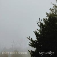 Good Good Blood Say Goodbye