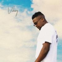 DJ Mshega Vibez