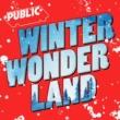 PUBLIC Winter Wonderland