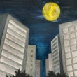 Academic BANANA 真夜中の月