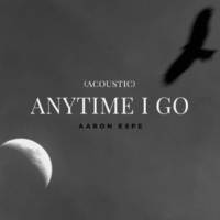 Aaron Espe Anytime I Go (Acoustic)