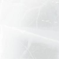 monocism 斑雪