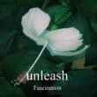 unleash Fascination