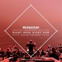 Milk & Sugar + Münchner Symphoniker + Euphonica IBIZA SYMPHONICA - Right Here, Right Now