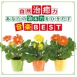 神山純一J.Project 自然治癒力 あなたの「治る力」をひきだす音楽BEST