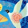 丹羽悦子 & 野田清隆 音の海から -12のピアノ作品- 尾高惇忠