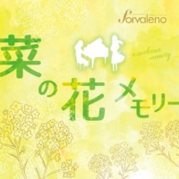 Forvaleno 菜の花メモリー