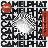 CamelPhat/Jem Cooke Rabbit Hole (Monkey Safari's Claps of Life Mix)