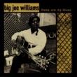 ビッグ・ジョー・ウィリアムス These Are My Blues [Live]