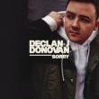 Declan J Donovan Sorry